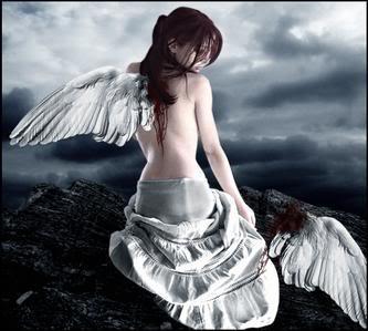 sayap patah